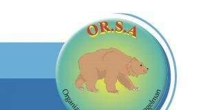 Lettera Associazione | OR.S.A. Organizzazione Sindrome di Angelman