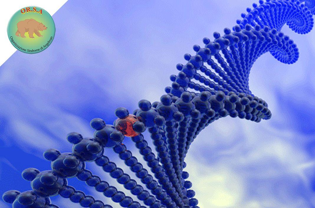 Nuova Compagnia Biotech | OR.S.A. Organizzazione Sindrome di Angelman